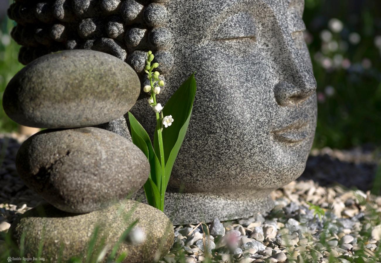 muguet et Bouddha, brin de muguet, 1er mai,fête du muguet,fête du travail
