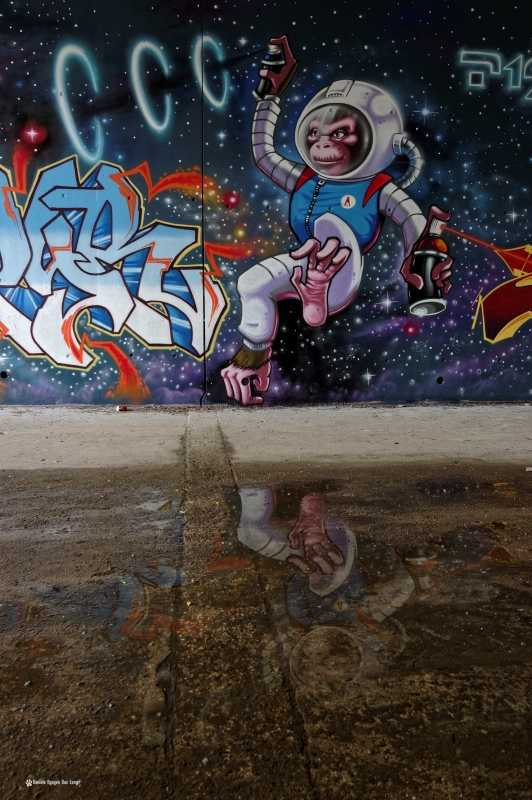 singe cosmos reflets tunnel A10, street art, tags