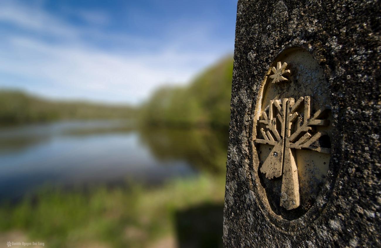 tête de cerf sur borne étang des Vaux de Cernay, Vaux de Cernay, étang, abbaye des Vaux de Cernay,