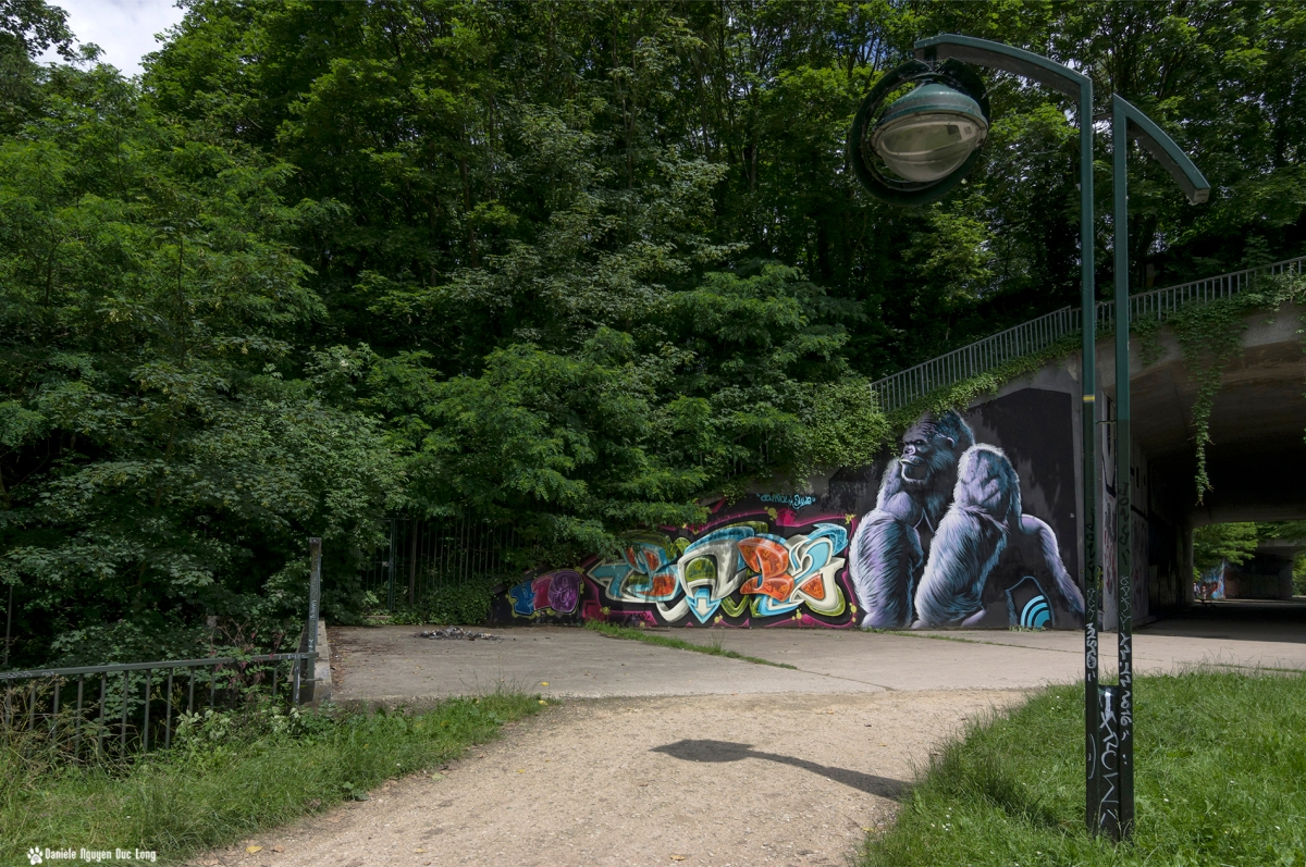 tunnel A10 le gorille, street art, tags,