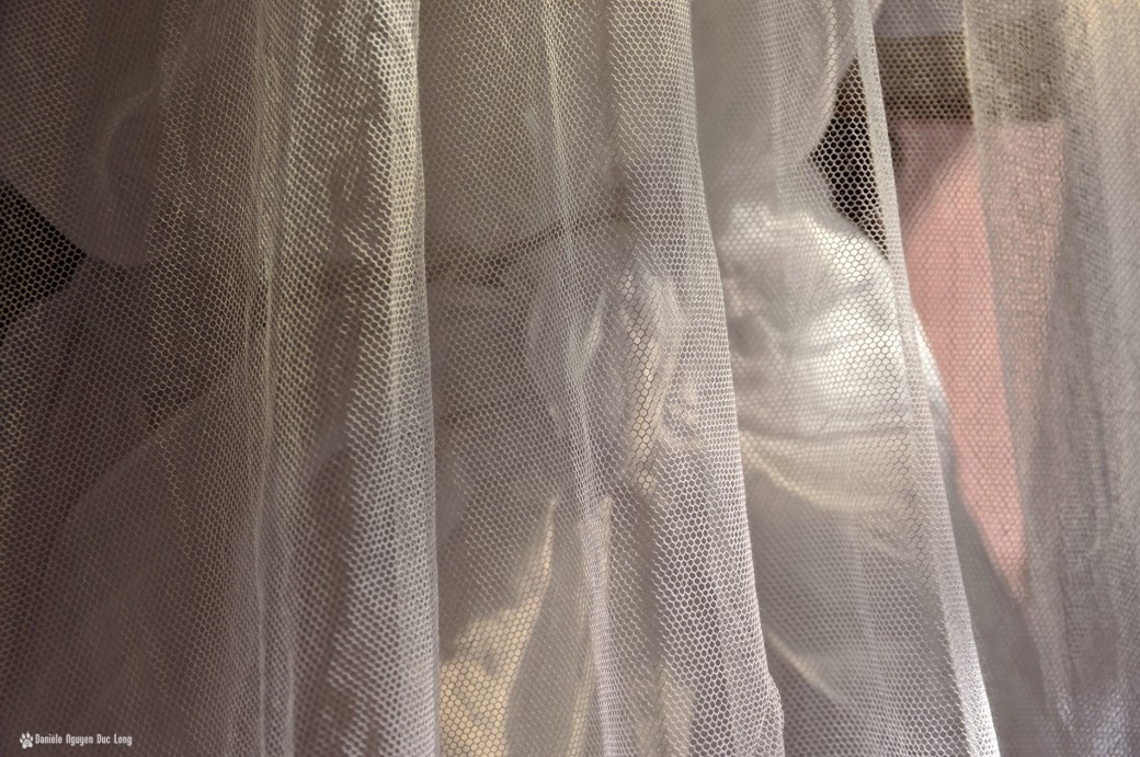 noeud derrière tulle robe communion, Guissény, Finistère, exposition costumes communion solennelle,