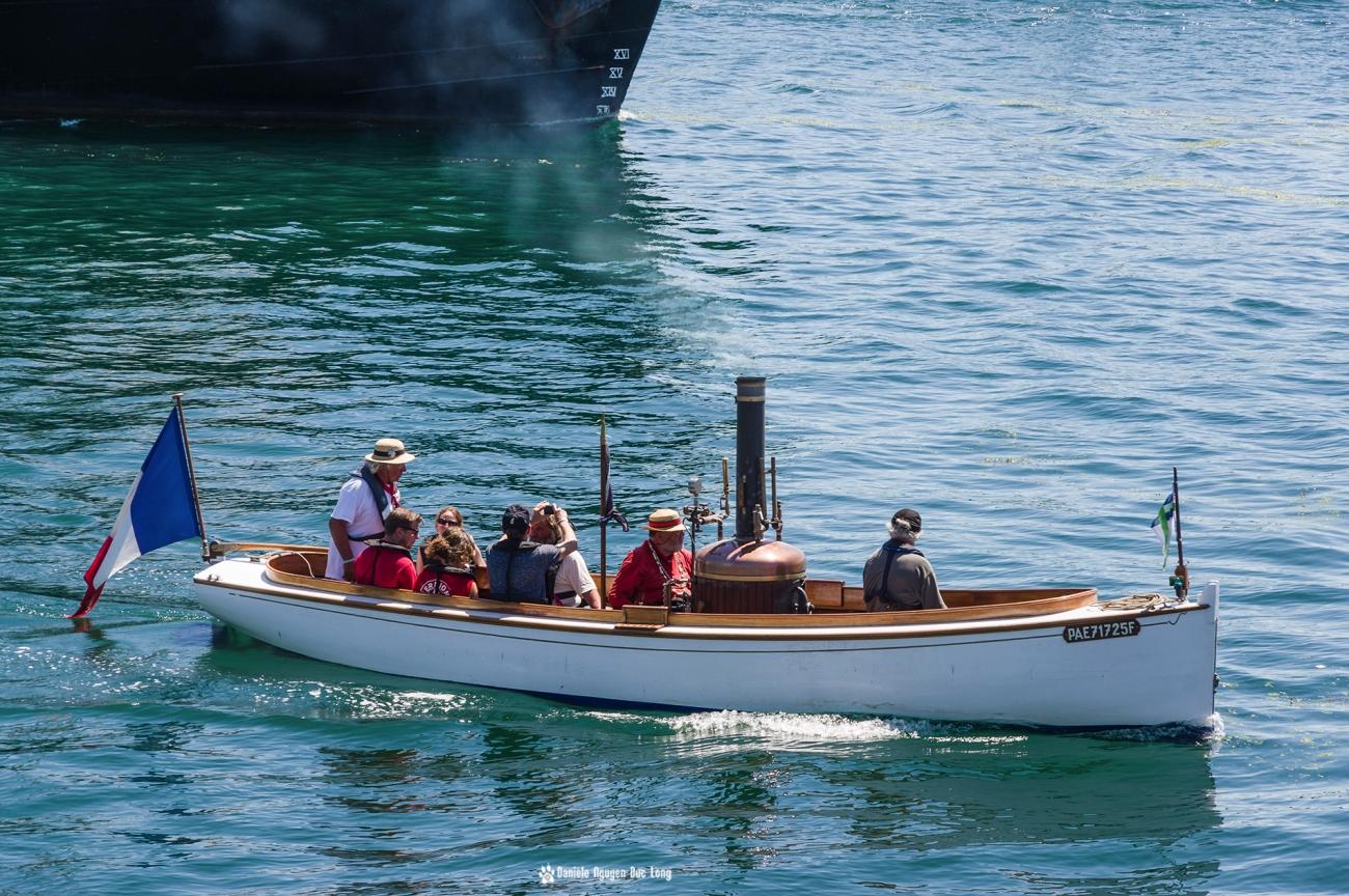 Brest 2016, la puce et l'éléphant - Elbe, canot à vapeur, chaloupe à vapeur, Brest, Bretagne, Finistère