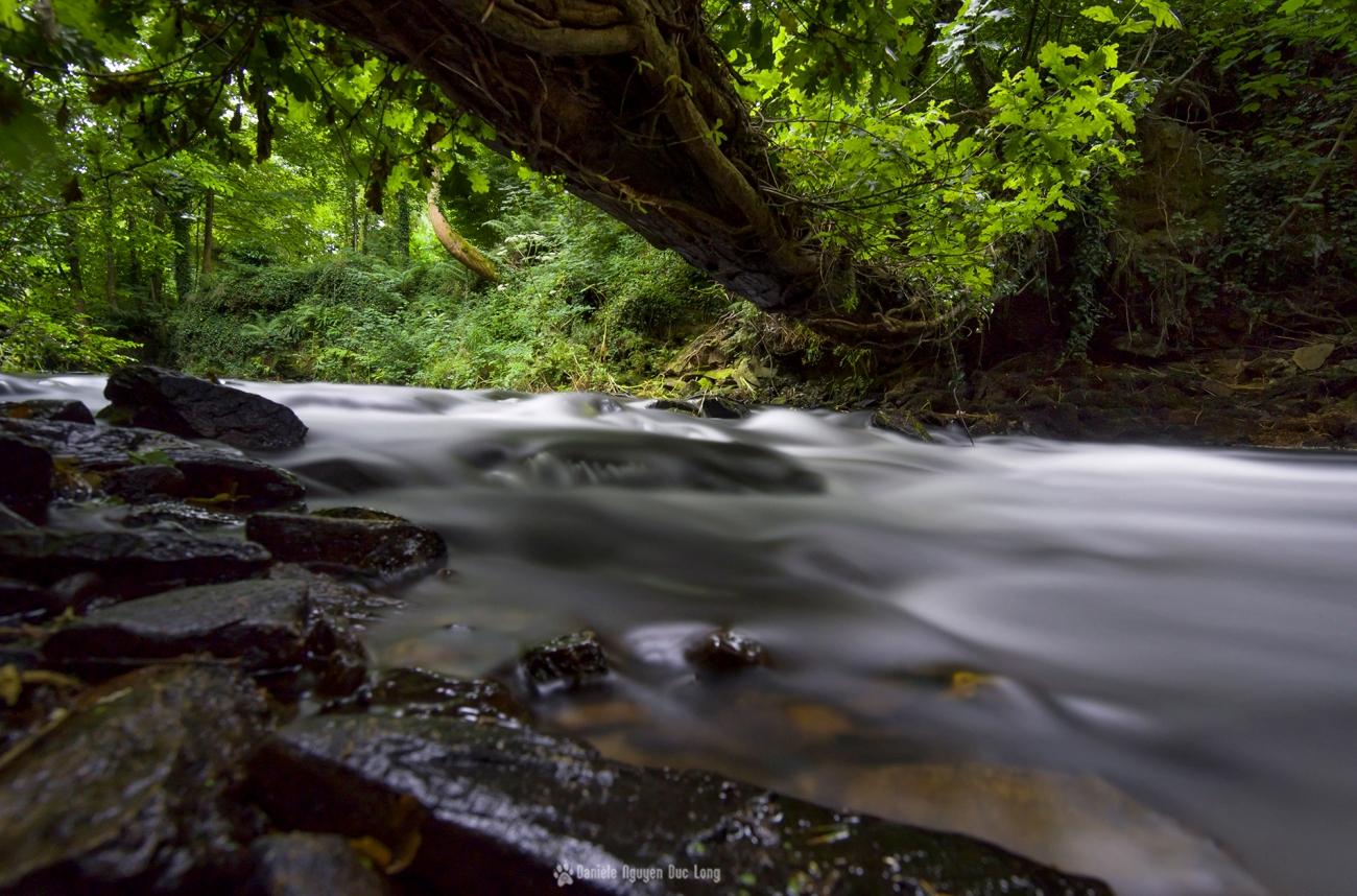pose longue Lanarvily sous tronc d'arbre, Aber Wrac'h, Bretagne, Finistère