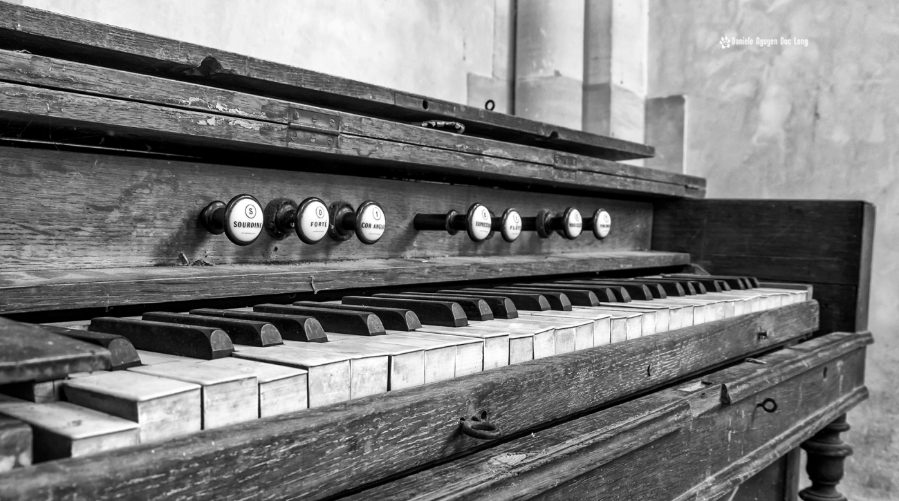 orgue-hopital-plaza-copie