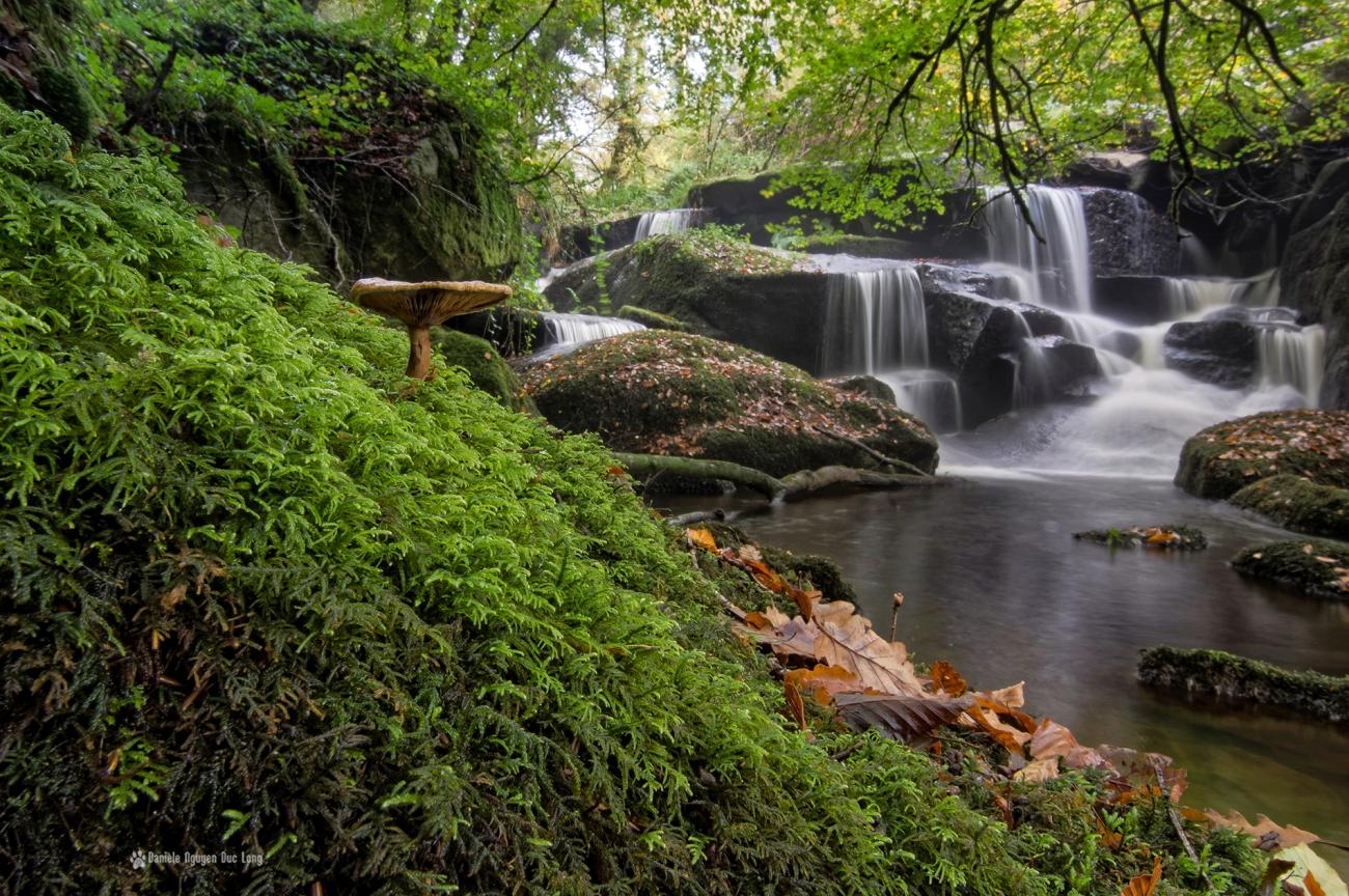 cascade-st-herbot-et-champignon-mousse-, pose longue, automne