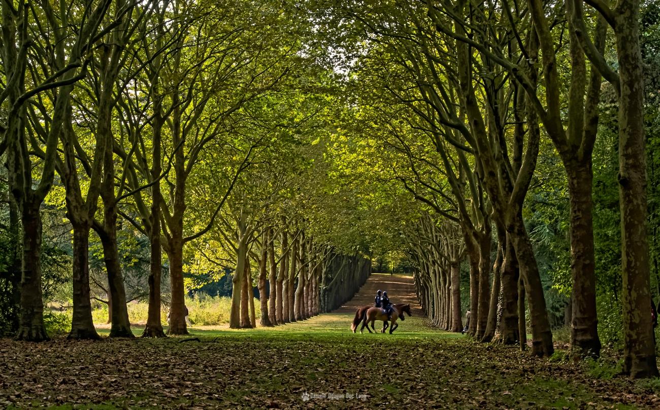 police-montee-au-parc-de-sceaux-, Parc de Sceaux, Anthony, Ile de France