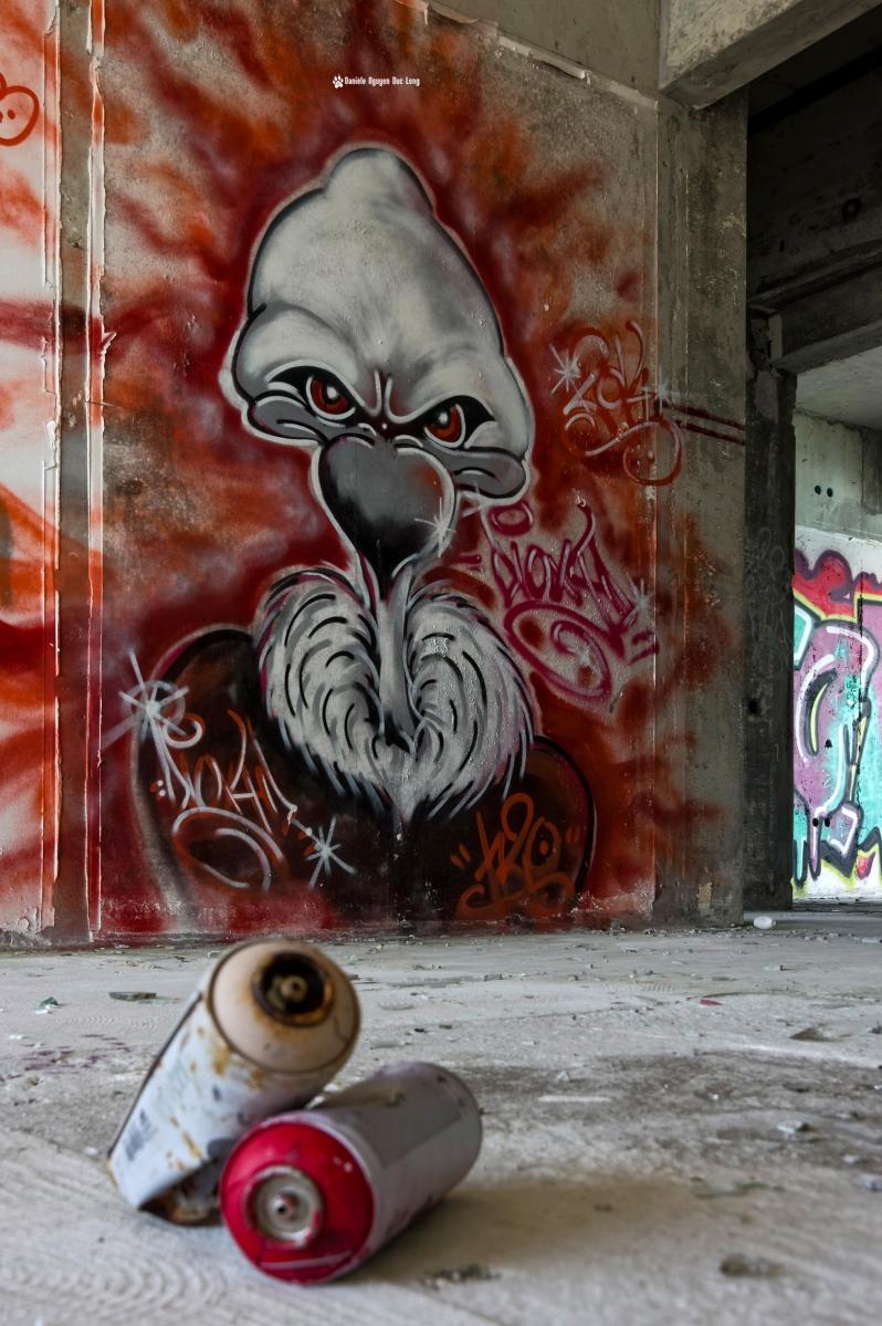 urbex-chez-les-vautours-vautour-et-bombes-, retour-chez-les-vautours-hotel-ste-barbe-, Le Conquet, Bretagne, Finistère