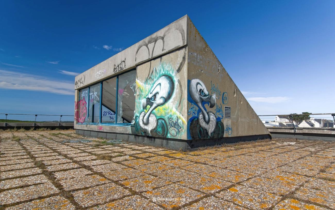 urbex-chez-les-vautours-vautours-sur-le-toit-,retour-chez-les-vautours-hotel-ste-barbe-, Le Conquet, Bretagne, Finistère