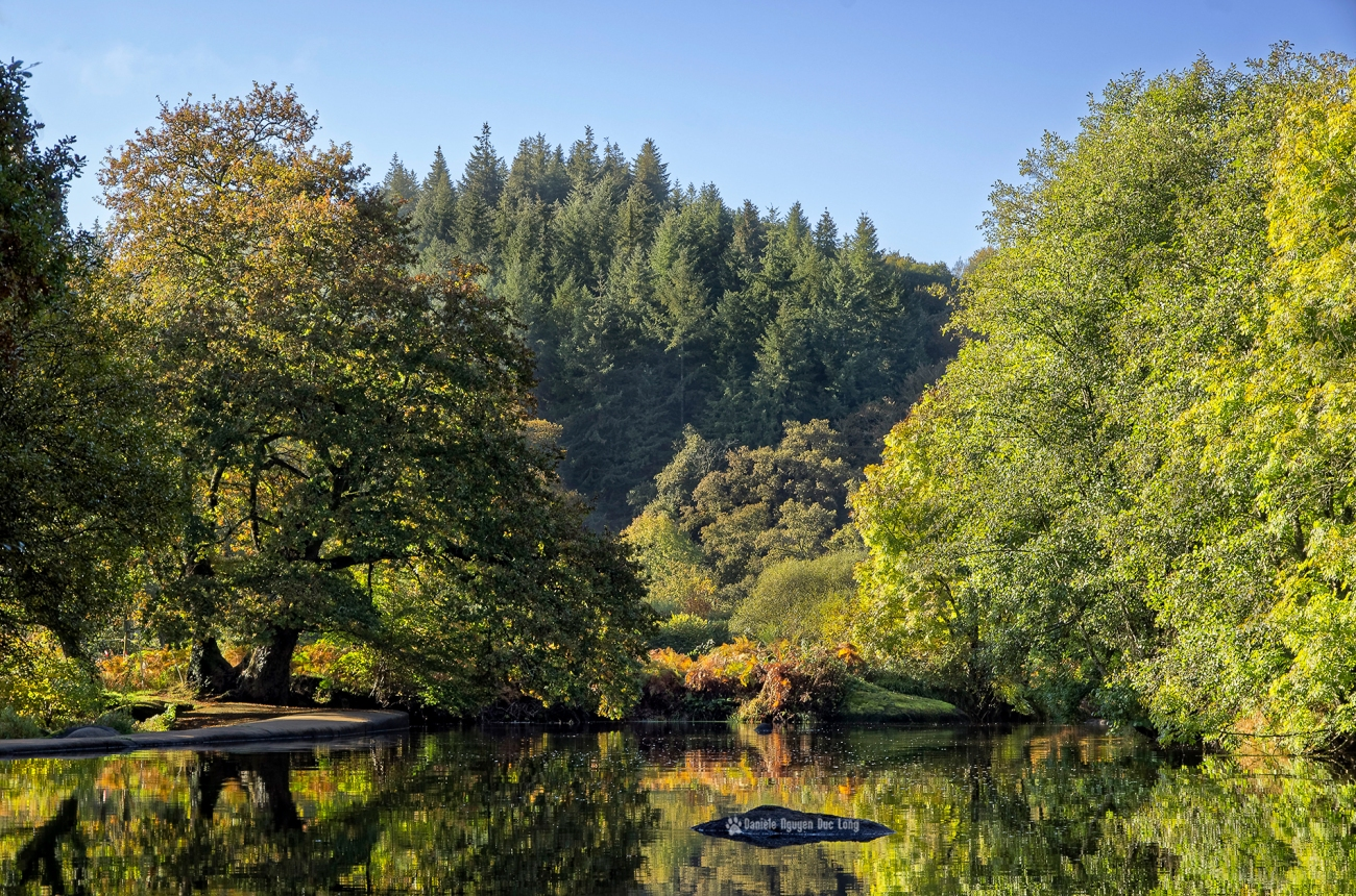 reflets-couleurs-d'automne-roches-du-diable-, Guilligomarch'h, Finistère, Bretagne, L'Ellé,