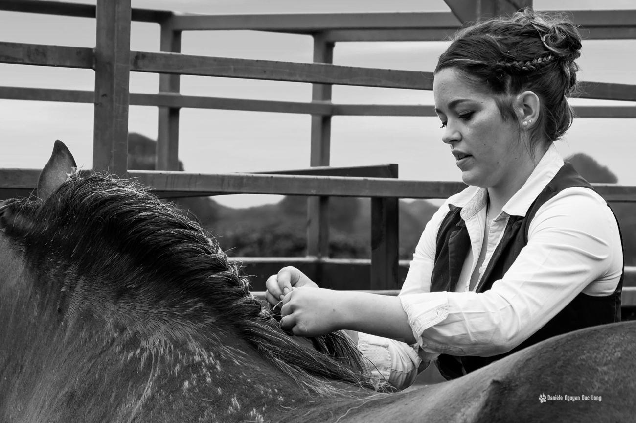 concours-chevaux-bretons-nattage-jeune-fille-1-copie-copie