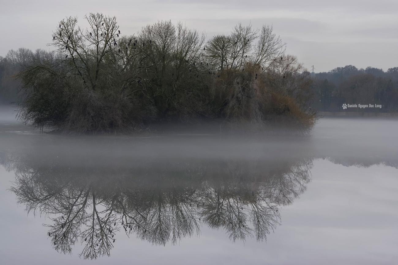 brume-sur-le-lac-02bis-copie