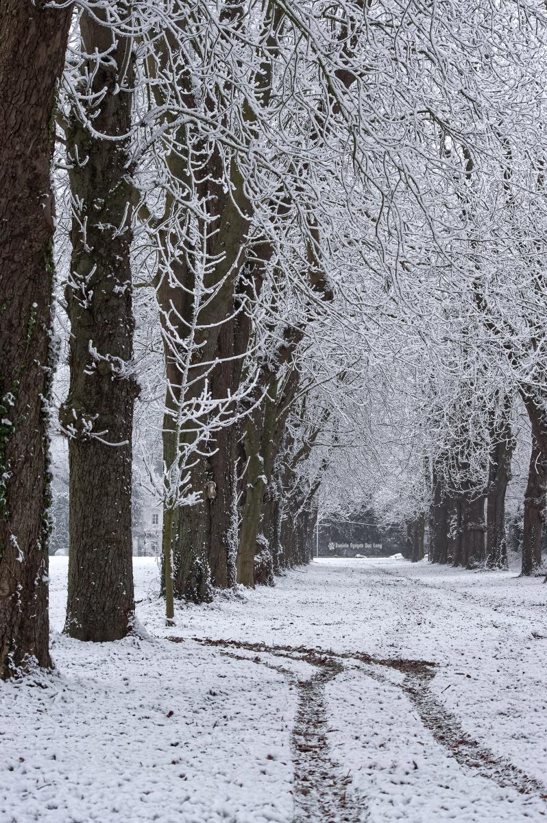 neige-du-nouvel-an-allee-chateau-et-traces-au-sol-copie
