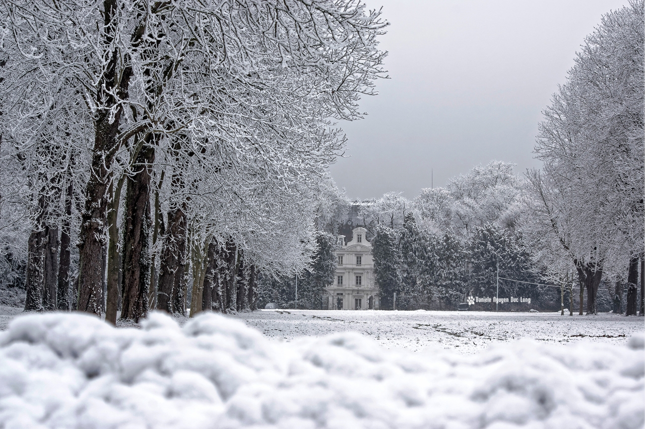 neige-du-nouvel-an-allee-maronniers-et-chateau-copie