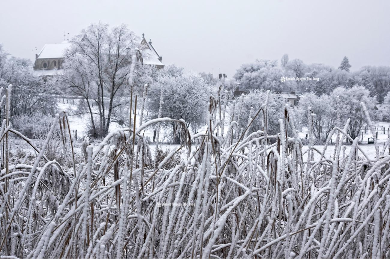 neige-du-nouvel-an-basilique-derriere-les-ajoncs_1-copie