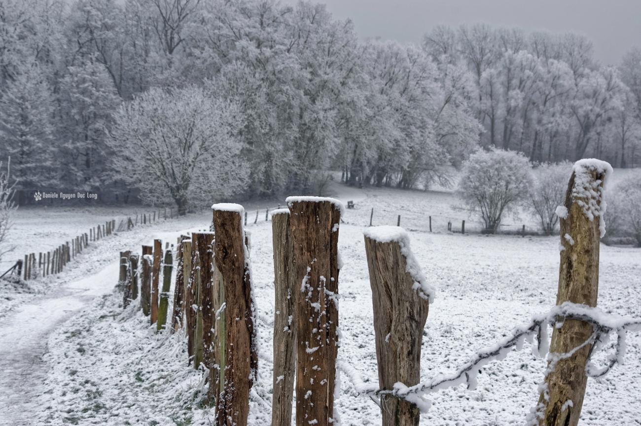 neige-du-nouvel-an-vue-sur-la-vallee-de-lorge-02-copie