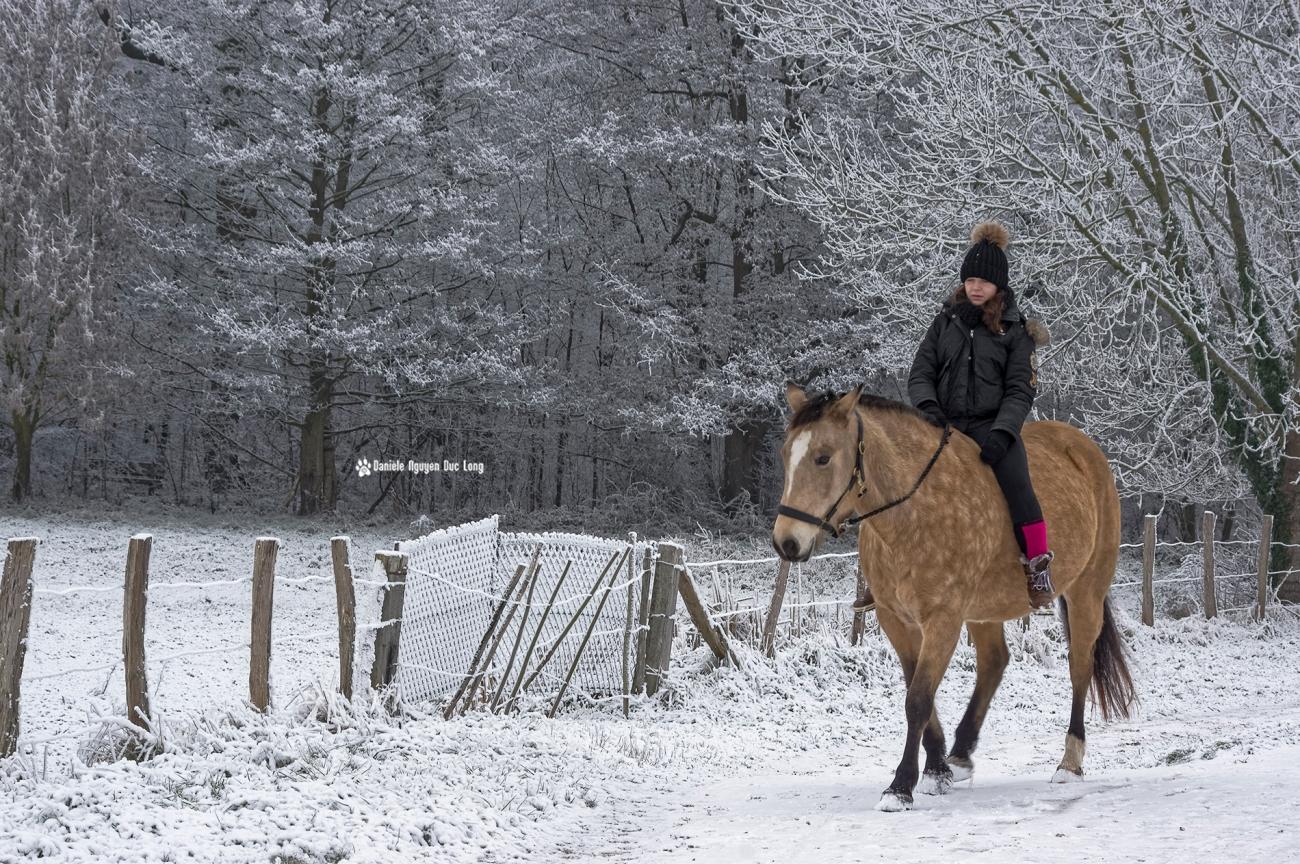 neige-du-nouvel-ancavaliere-01-copie