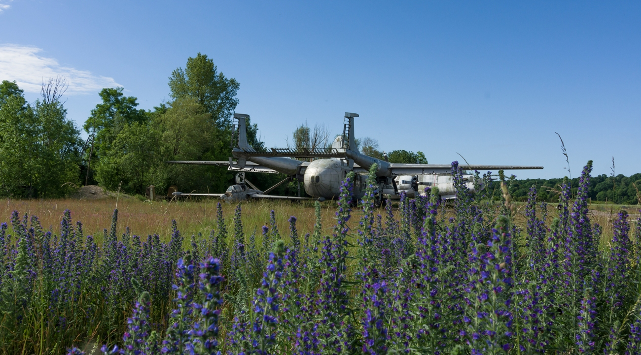 urbex - Top Gun - Planes, cimetière d'avions, en arrivant au raz des fleurs
