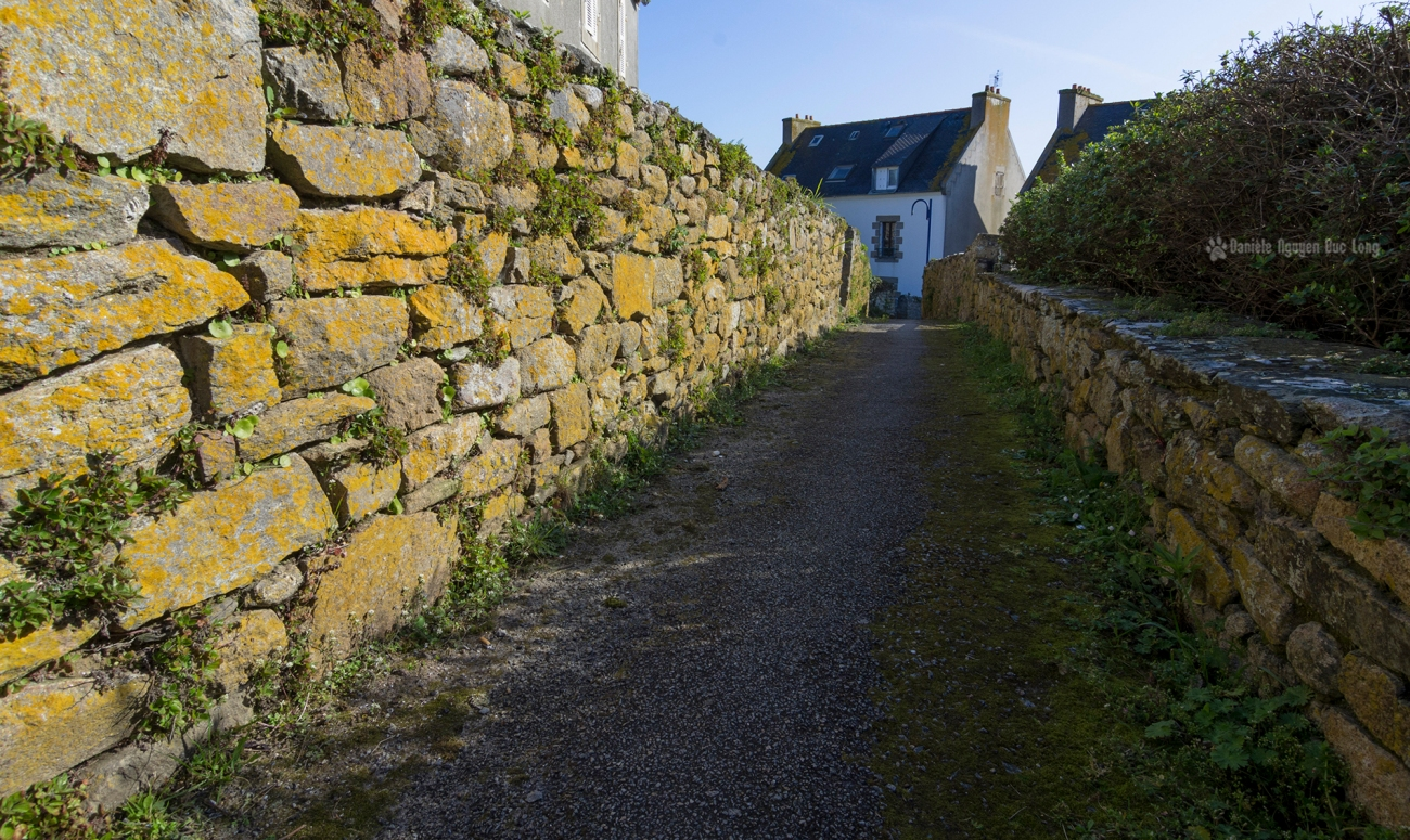 ruelle typique de Molène