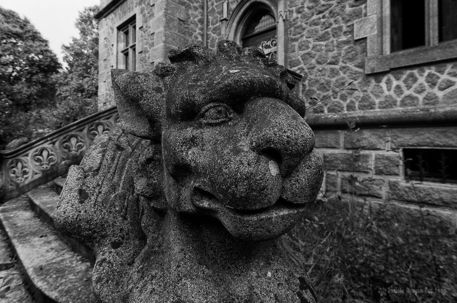urbex château gargouilles tete de chien lion avant copie N&B