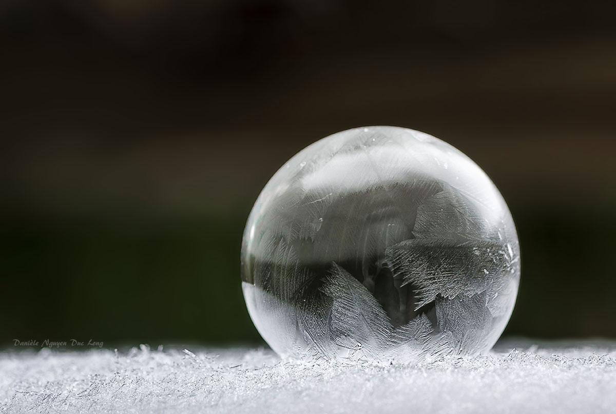bulle de savon gelée, macro, pentax , smc PENTAX D-FA MACRO 100mm f/2.8 WR
