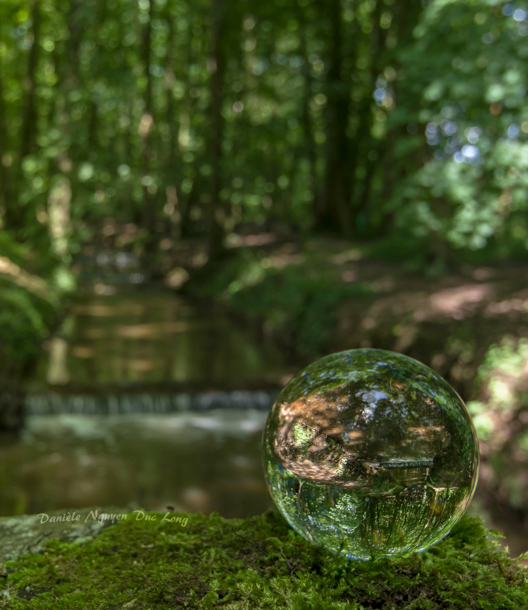 photo à travers une boule de cristal