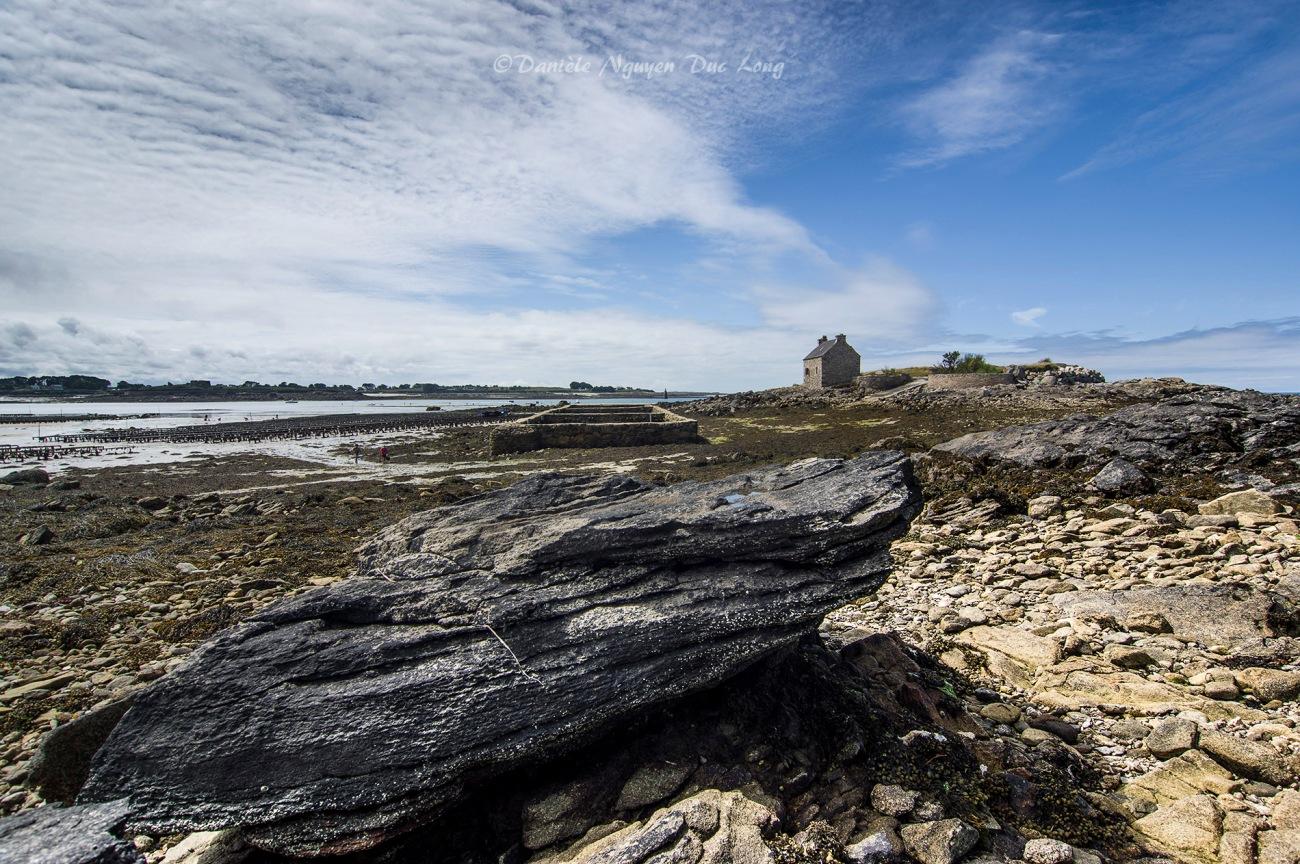 parc à huîtres de chez Legris, Lilia, petite île Vrac'h